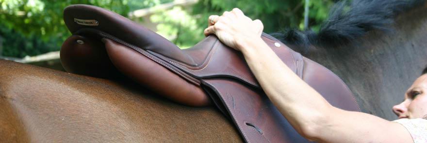 Saddle Fitting check ajustement de selle