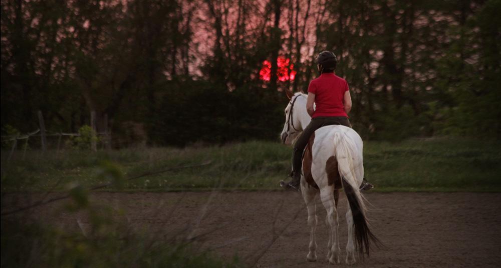 équitation et calme