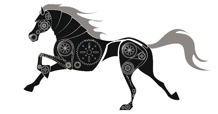 Marie-hélène Ménard-Laroche biomécanique équine cheval entrainement